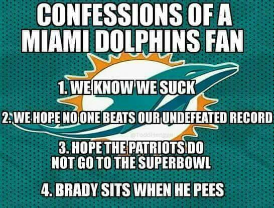 d0f6846e76cc07688b4591bdb61a28d0 pin by michelle mastorakis on football mostly miami dolphins