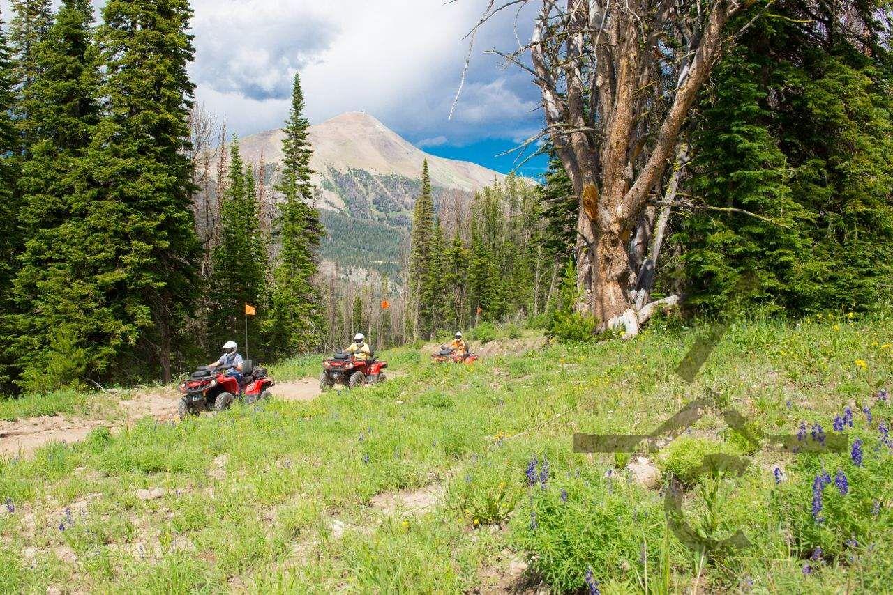 Summer activitiesATV riding trails Atv riding, Best atv