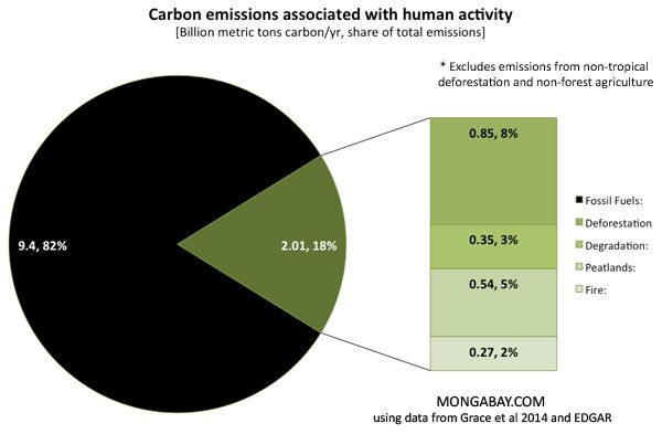 Protecting rainforests could sequester equivalent of a third of global emissions annually Rhett A. Butler, mongabay.com   PIC: Share of global carbon emissions from human activities, excluding boreal, temperate, and other non tropical deforestation as well as agriculture outside forest areas.. Read more at http://news.mongabay.com/2014/0613-tropical-forest-carbon-balance.html#Y2IP2yS5Jhq8fyCJ.99