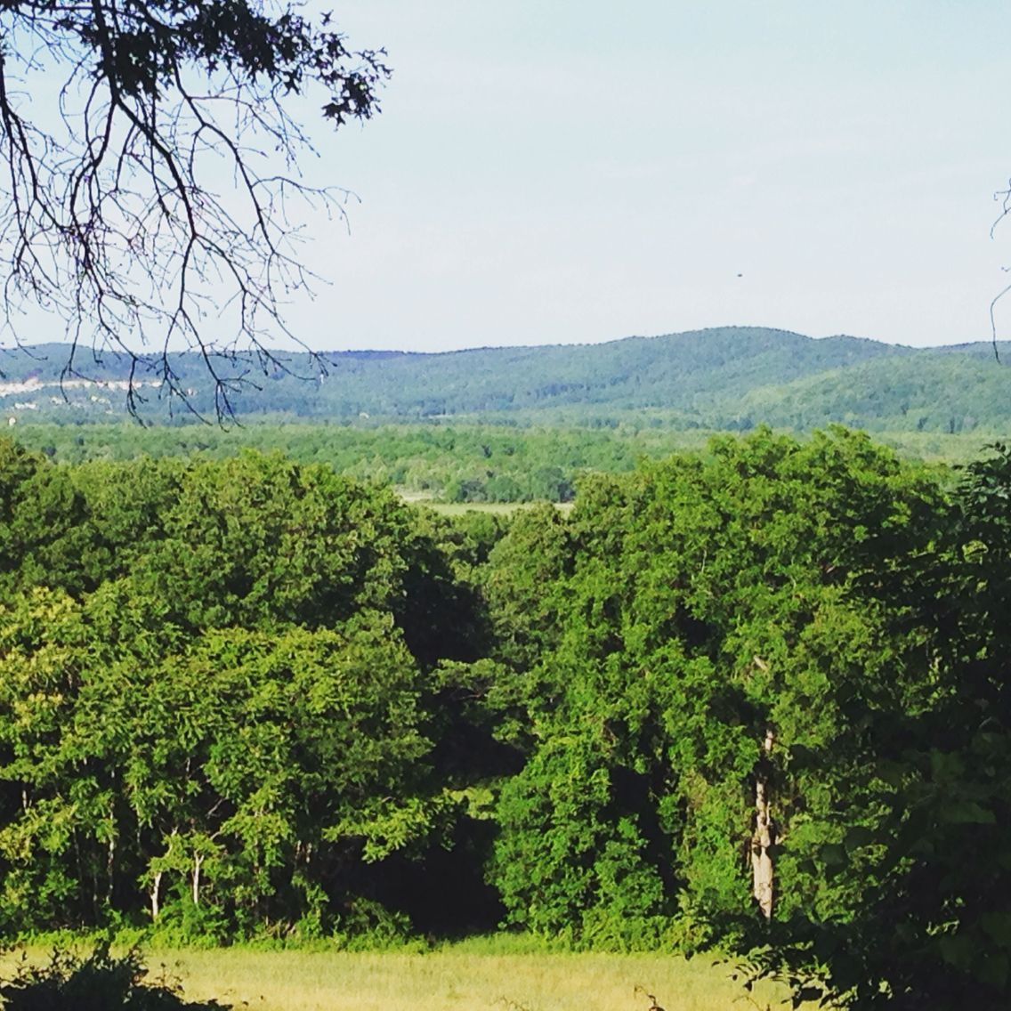 Imagine this was your view! Took from a deck of a home I viewed with clients in NJ.