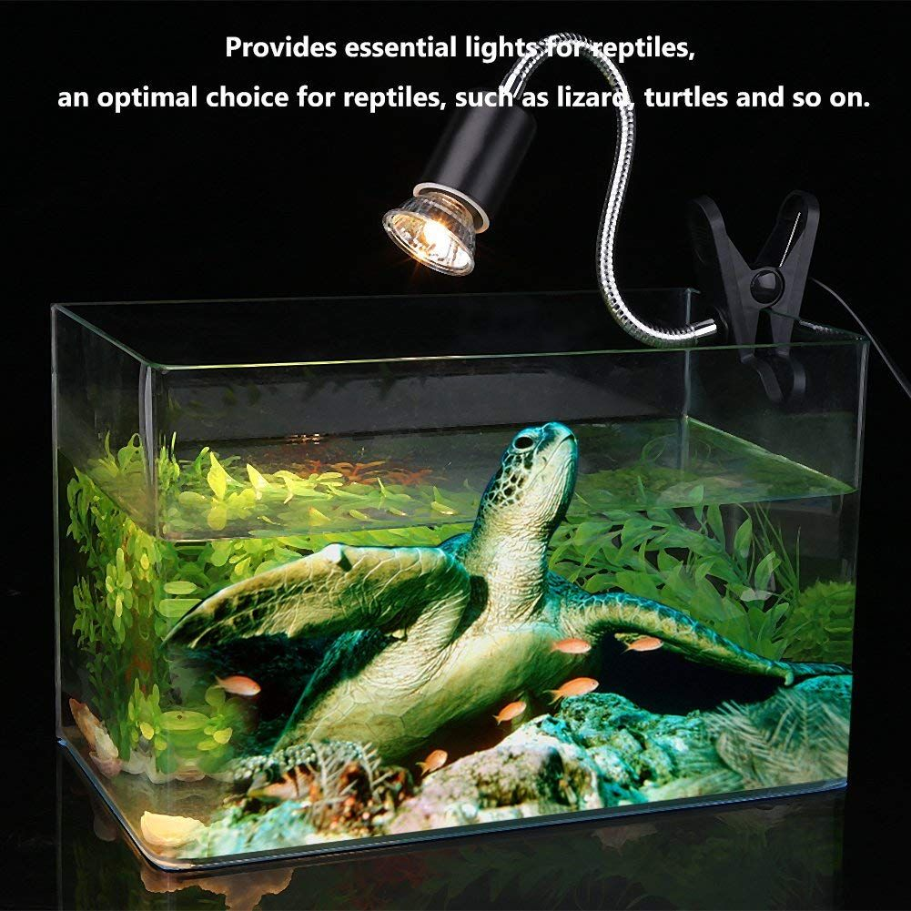 Zerone 75w Heating Light Bulb For Reptile Turtles Aquarium Heating Lamp Light Sun Lamp Sunbathe Reptile Lizard Lamp For Turtle Aquarium Reptiles Pet Fish Tank