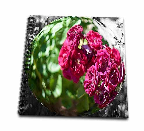 click on A Bubble With Dark Pink Flowers Inside Layered and Done in Color and Black and White to enlarge!