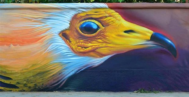 """Life Neophron"" 140 ideas mural"