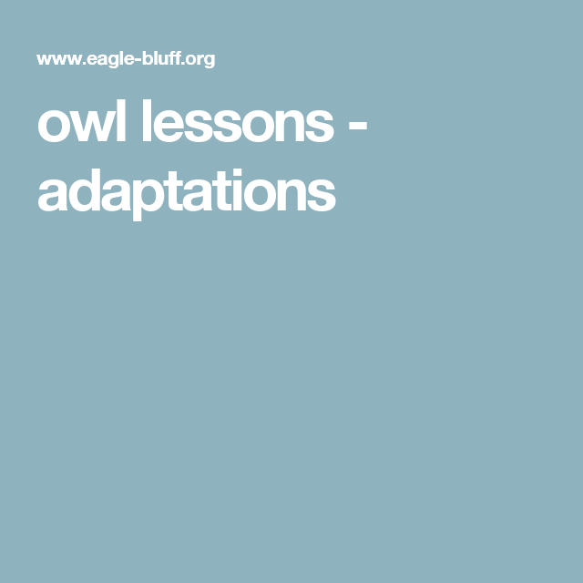 owl lessons - adaptations