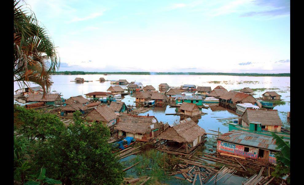 Amazing Amazonia Amazon Rainforest 46 Pics Peru Travel