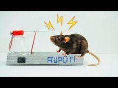 Part1_How To Make A Stun Gun High Voltage Circuit - YouTube
