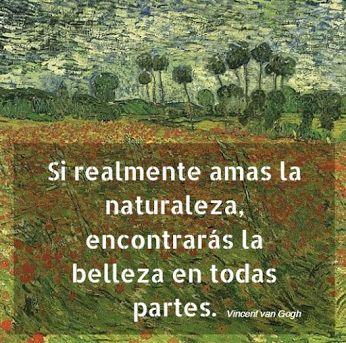 Frases De Van Gogh Arte Y Pintura Frases De Arte Frases