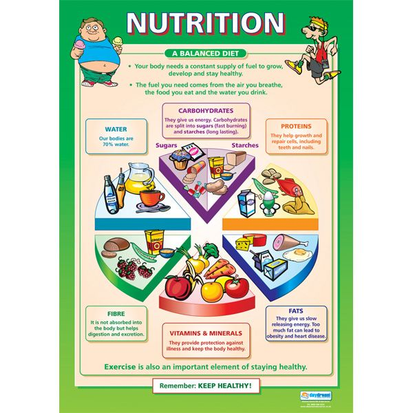 Nutrition chart biology forensics health nutrition human