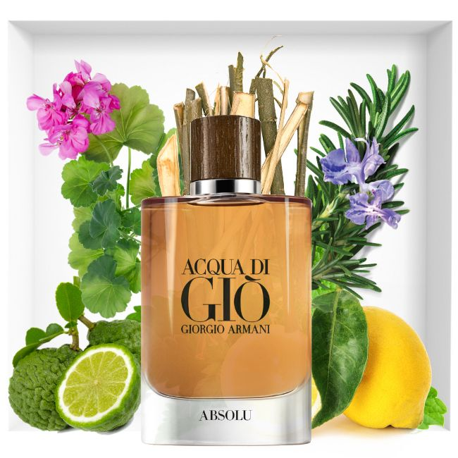 The New Fragrance Acqua Di Gio Absolu Catalogue Parfums Creation