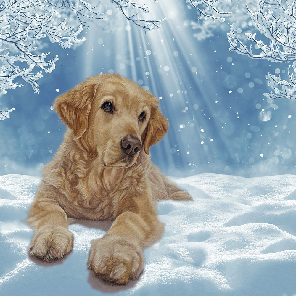 20 X Golden Retriever Christmas Cards Perfect Holiday Greetings