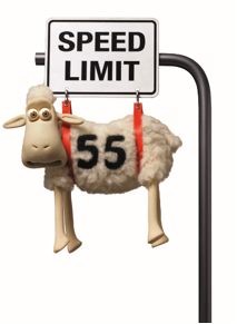Times are hard for the Counting Sheep especially since Serta