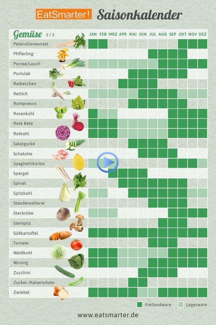 Dein Saisonkalender für das ganze Jahr #vegetable in 2020 ...