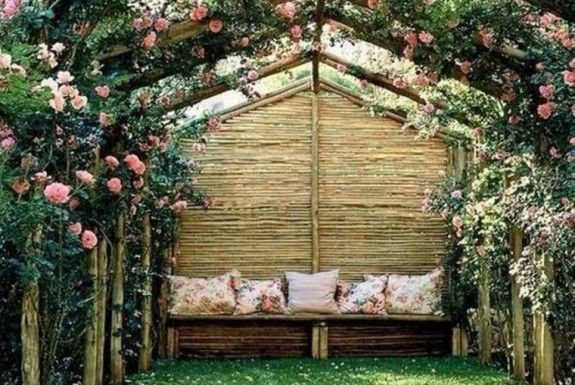 plante grimpante ombre pour pergola de jardin nid d. Black Bedroom Furniture Sets. Home Design Ideas