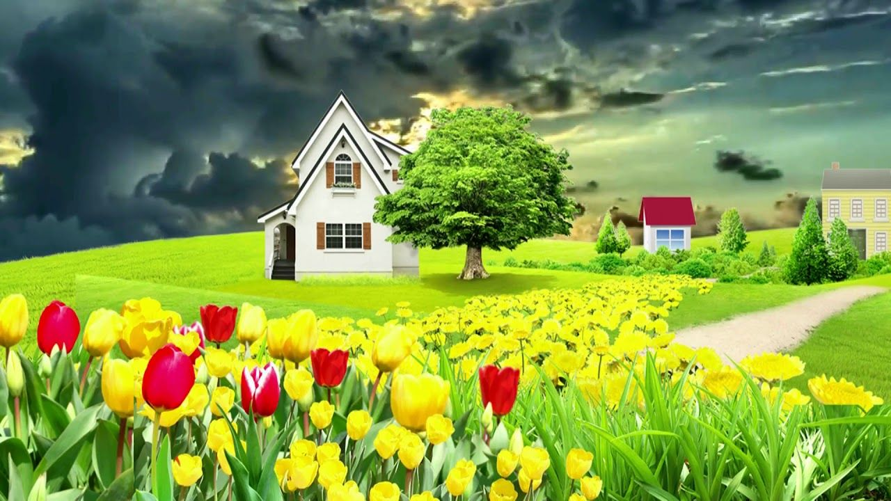Beautiful Nice Animation With Natural Flower Scenery Dream Background V New Background Images Scenery Dream Background