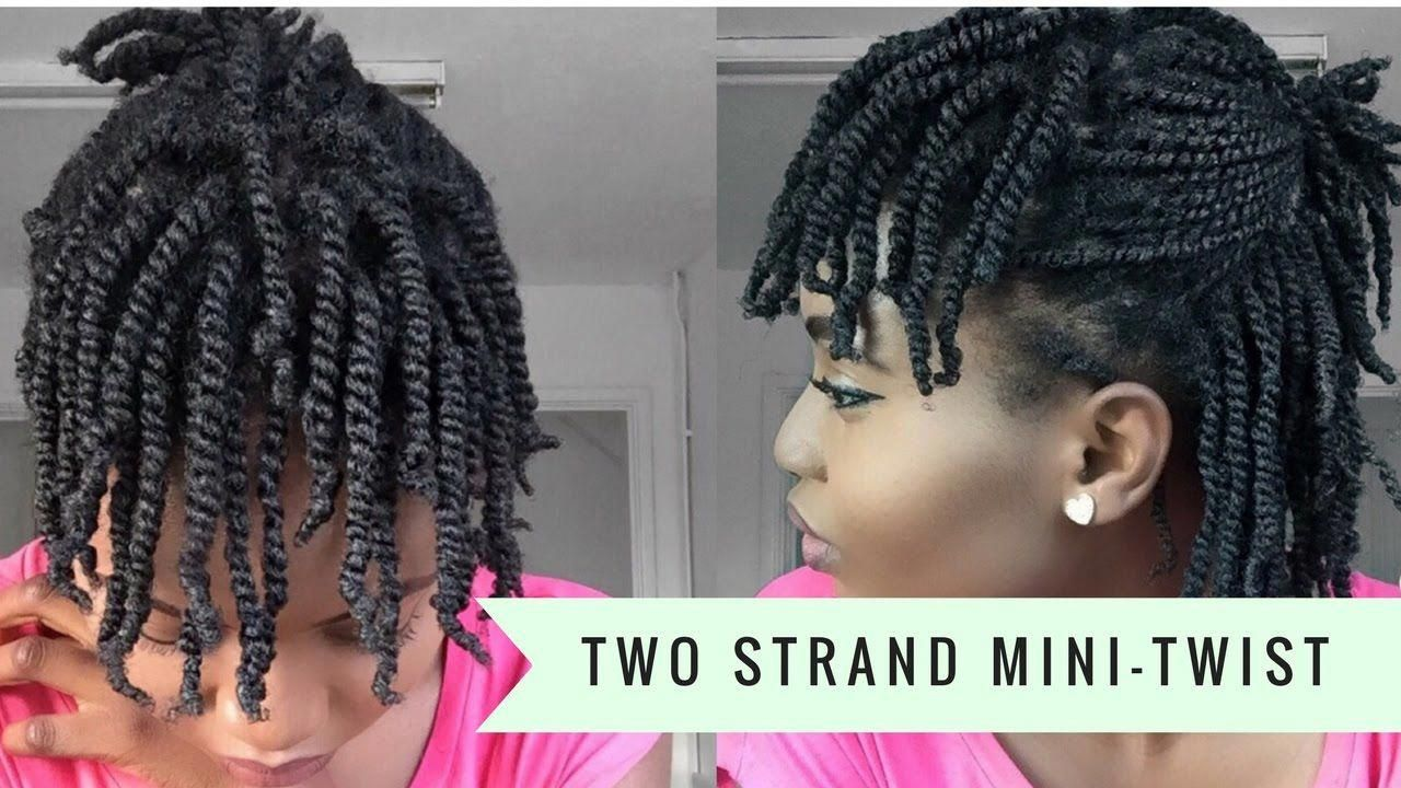 Super Easy Two Strand Mini-Twists on Dry Natural Hair ( 4C ...