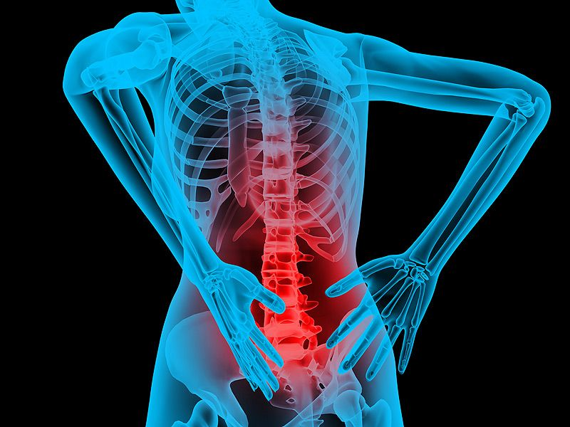 Acute and Chronic Back Pain