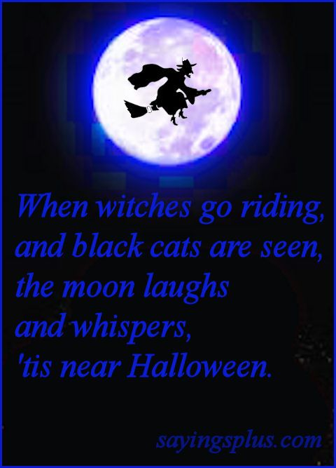@Elaine Hwa G Saw This U0026 Thought Of You   The Halloween Part That Is :)