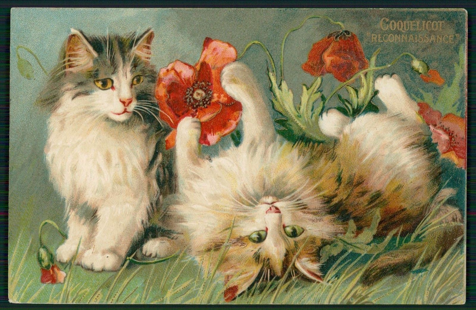 Cats /& Red Poppies Reproduction Quilt Block Multi Sizes FrEE ShiP WoRld WiDE