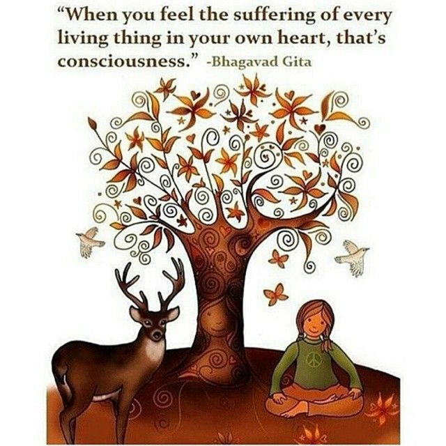 #bhagavadghita #consciousness #higherconsciousness #suffering #empathy #connection #wisdom #awareness #animalwelfare #vegan #vegetarian #animallovers #quoteoftheday #goodquote #word #truth #foodforthought