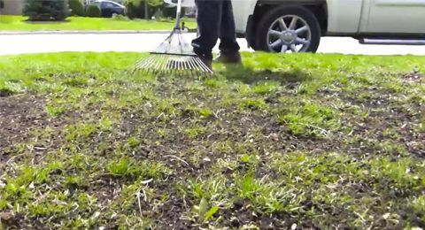 How to Over Seed Your Lawn 7 Easy Steps is part of Overseeding lawn, Seeding lawn, Reseeding lawn, Lawn soil, Planting grass, Lawn repair - If your lawn has grass in some areas but looks pretty thin in others, you may want to consider over seeding your lawn  Grass that's been damaged by a drought   a lack of rain in the spring, followed by a hot summer   often results in thinning areas, or a lawn that appears patchy …