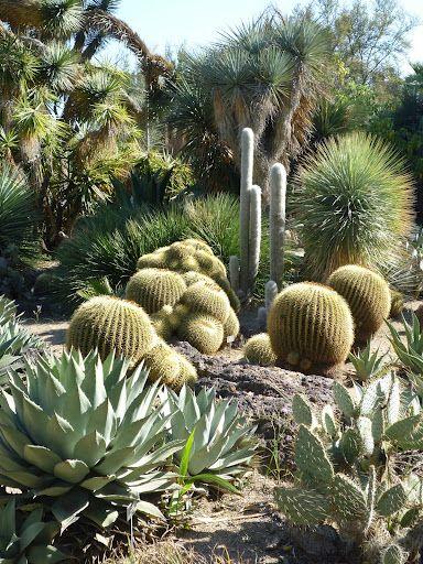 The huntington botanical gardens in pasadena ca are an - Huntington beach botanical garden ...