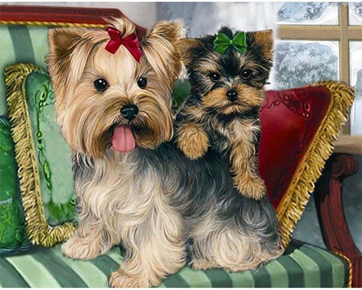 5D Diamond Painting Yorkie Mom /& Puppy Kit