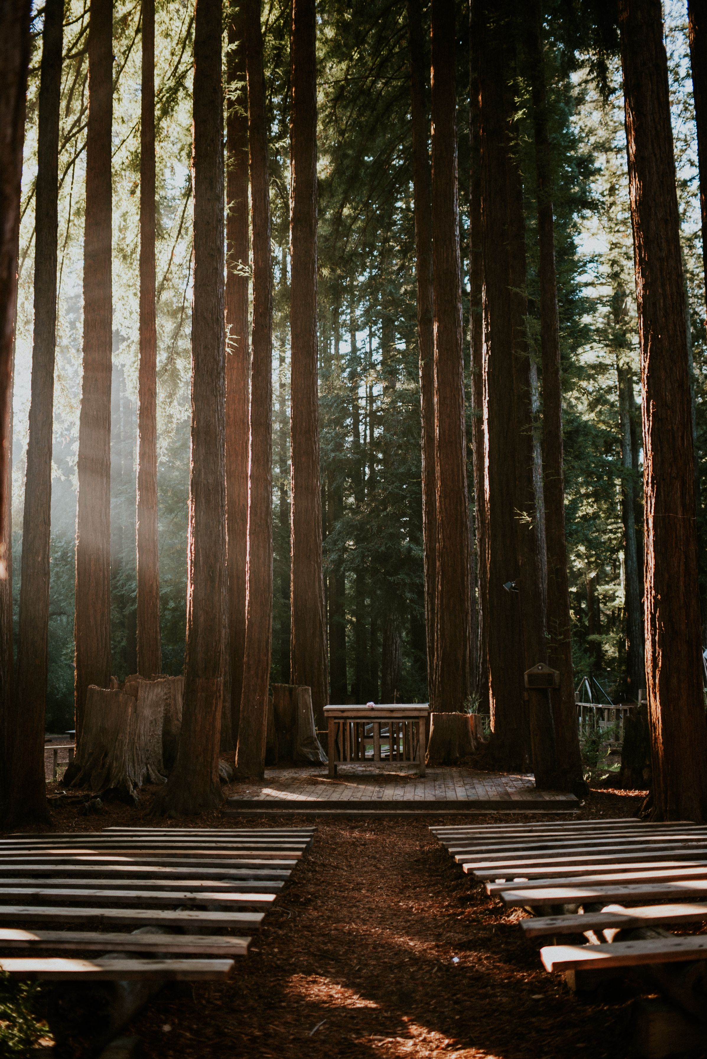 Pin By Shelby Hale On Ymca Camp Campbell Weddings Pinterest Wedding Goals And
