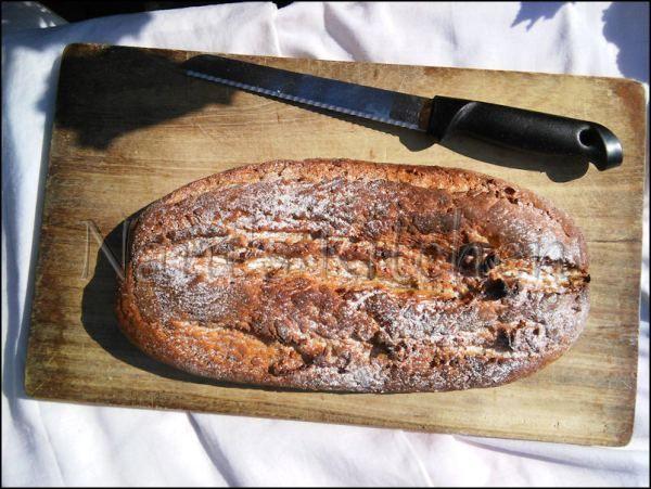 pain seigle et lin (2)