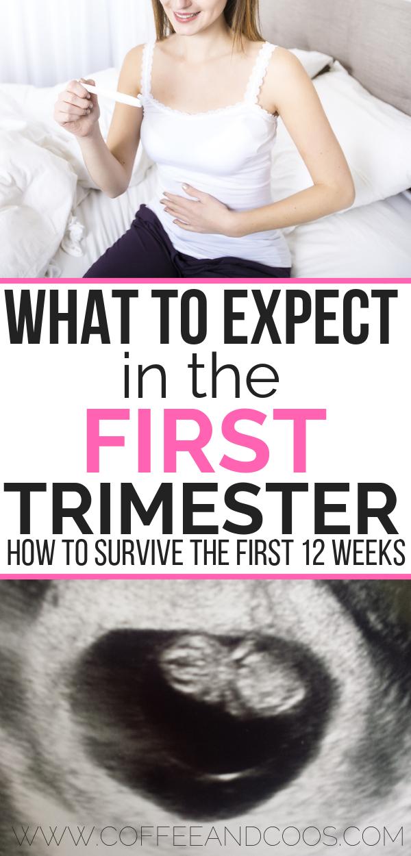 Are you a newly pregnant mom? Learn more about the first trimester! From your first ultrasound, to early pregnancy symptoms, and common fears for first time moms, this post has it all! Learn more about how to survive the most difficult trimester of pregnancy! #pregnancy #firsttrimester