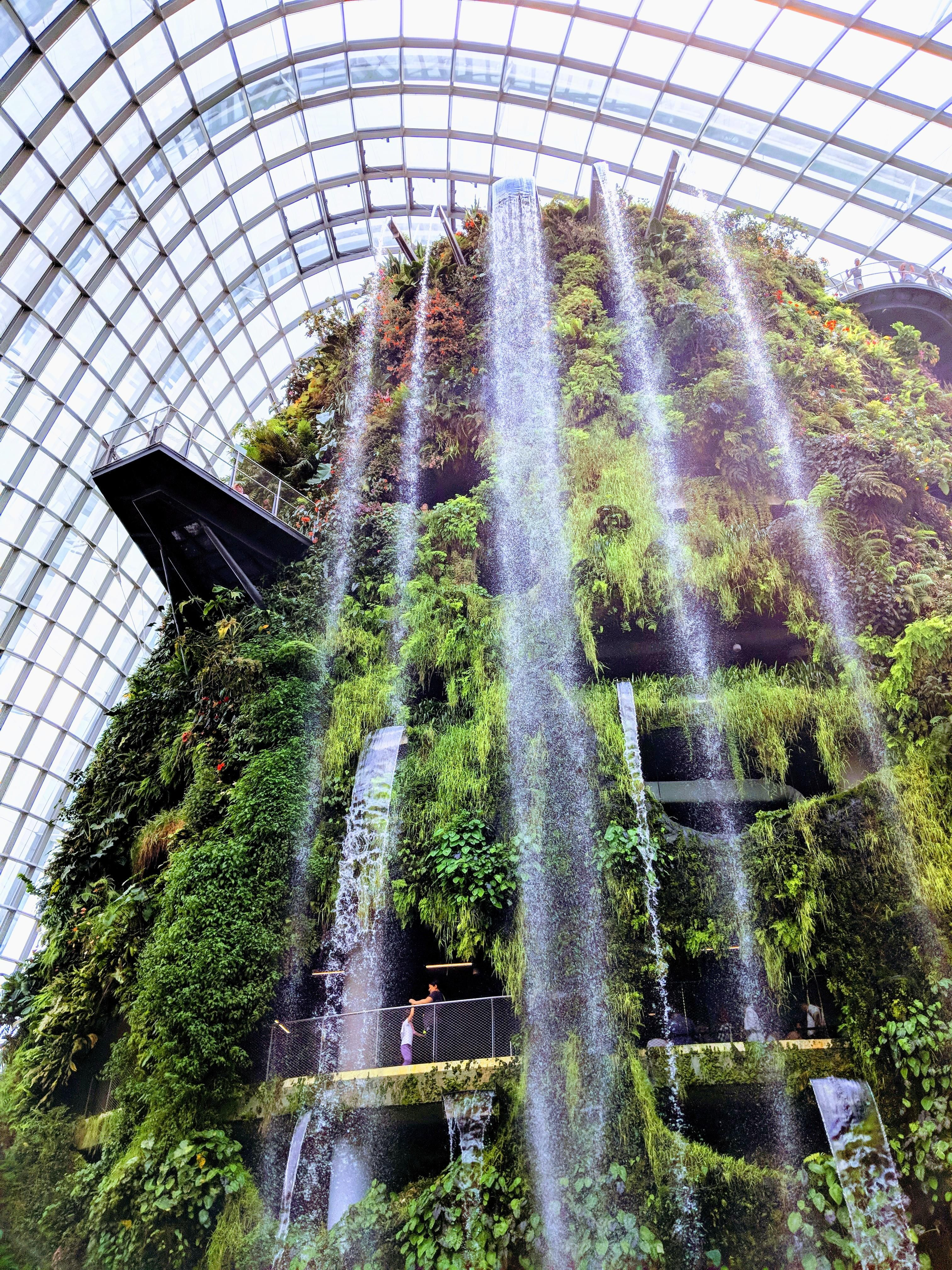 Cloud Forest Waterfall In Gardens By The Bay Singapore This Dome Has Is Highly Self Sufficient Wit Forest Waterfall Beautiful Images Nature Gardens By The Bay