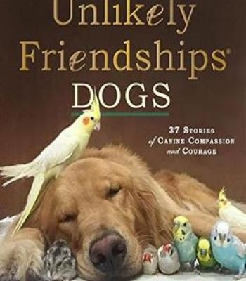 Unlikely Friendships Dogs 37 Stories Of Canine Compassion And