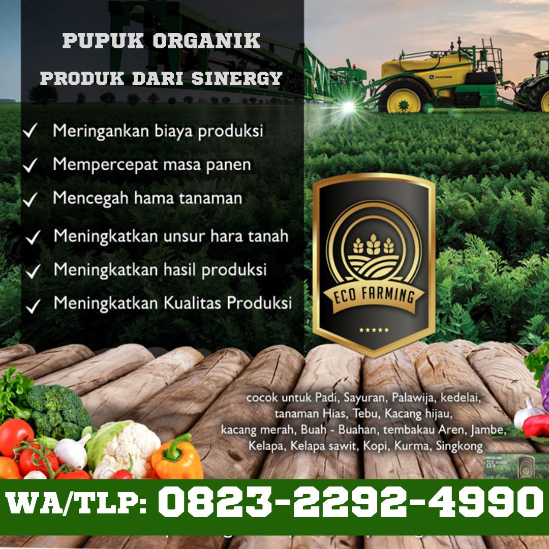 Hub 0823 2292 4990 Jual Pupuk Ecofarming Cikarang Distributor Organik Pupuk Ecofarming Bogor Pupuk Organik Tanaman Pupuk Kompos