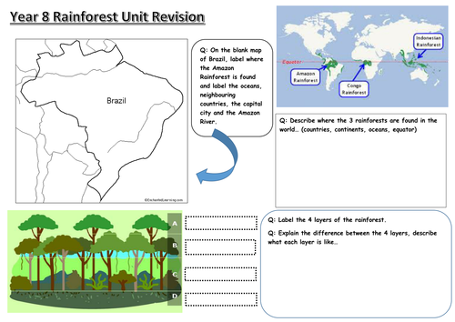 Rainforest revision worksheet | Secondary: Geography