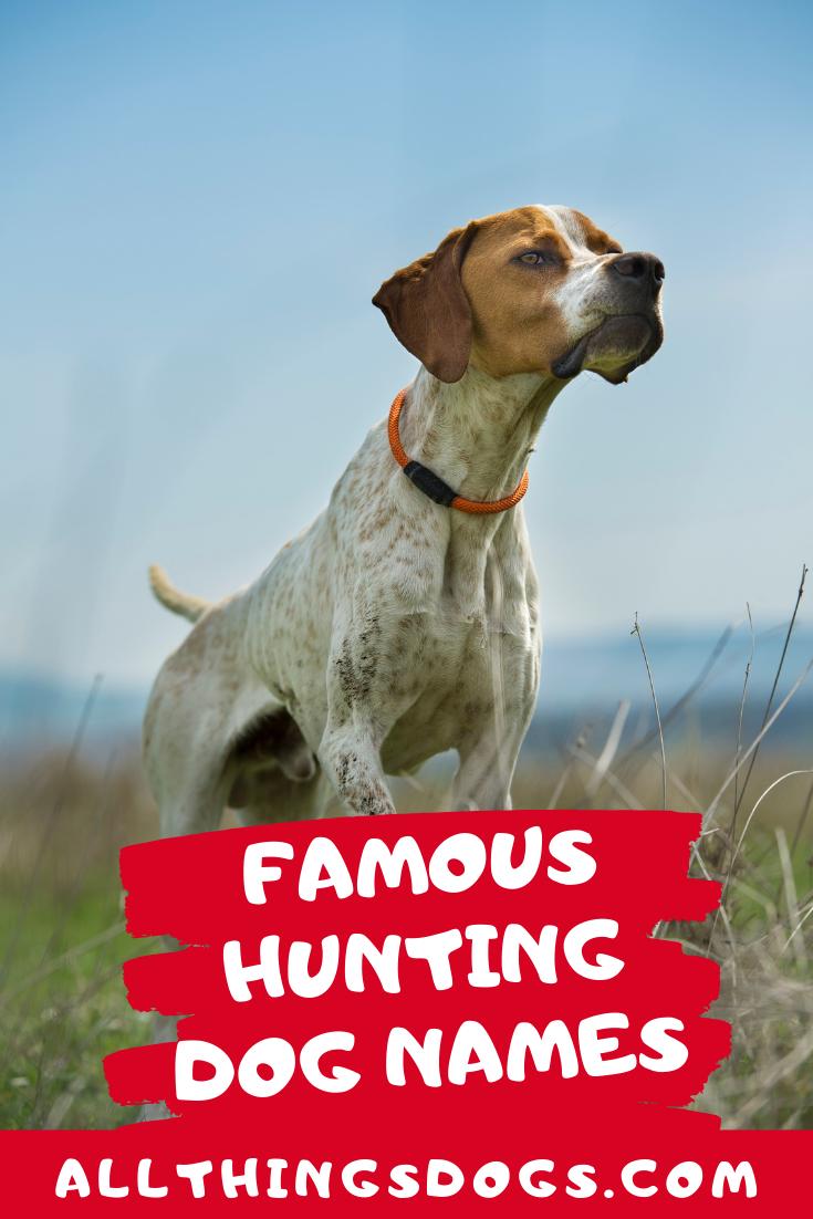 New Medium Handmade Labrador Retrieve Hunting Dog Denim Tote Bag