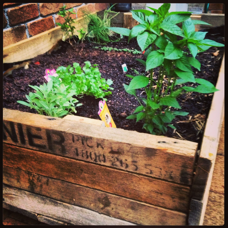Pallet Veggie Patch Veggie Patch Garden Vegetable Garden