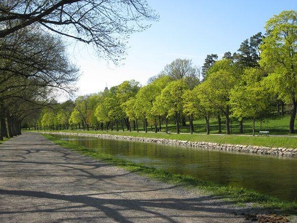 Stockholm zomaar 'een groene stad' noemen is een groot understatement. Zelden heb ik een hoofdstad gezien waar de natuur zó de ruimte krijgt als in Zweden. Niet alleen voor het water is voldoende plaats, ook parken zijn er volop. Nog iets waar Stockholm in uitblinkt, zijn de uitstekende mogelijkheden voor fietsers. Vooral het grootste park van de stad, Djurgården, leent zich goed voor een verkenningstocht op twee wielen.