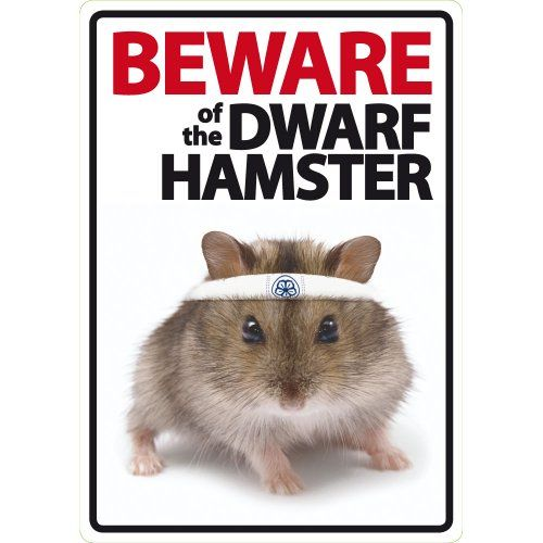 Beware Of The Dwarf Hamster Plastic Sign Read More Reviews Of The Product By Visiting The Link On The Image Dwarf Hamster Hamster Robo Dwarf Hamsters