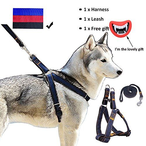 Dog Leash Harness For Dogs Heavy Duty