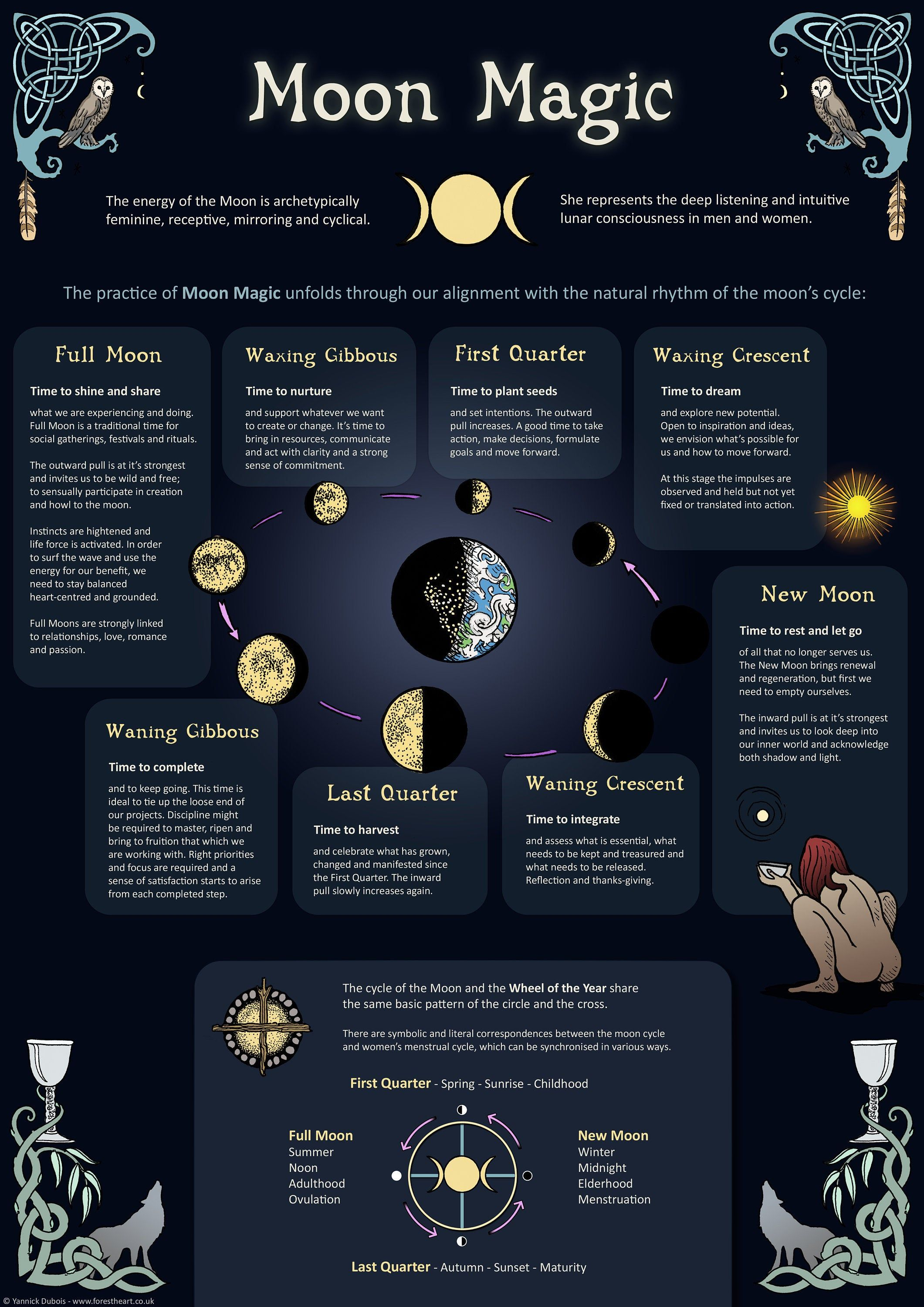 Moon Magic - Infographic - A3 Poster