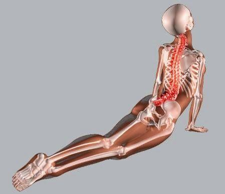 Dolor de espalda por bajar de peso