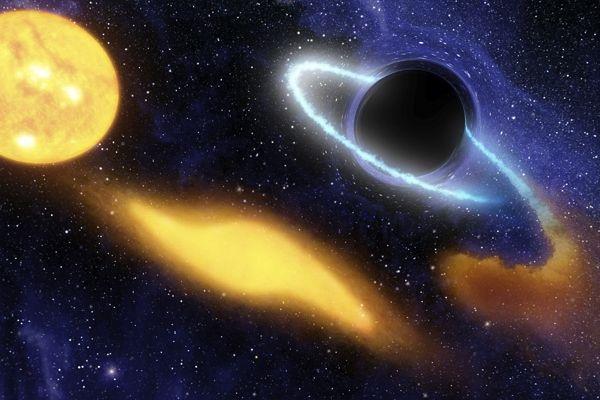 "Scientists have recorded the last gasps of a star being swallowed by a black hole, and are likening its ""quasiperiodic oscillations"" to a human scream.    ""You can think of it as hearing the star scream as it gets devoured,"" astronomer Jon Miller told University of Michigan's press service."