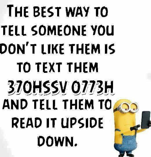 Lol...That should do it.... Funny minion quotes