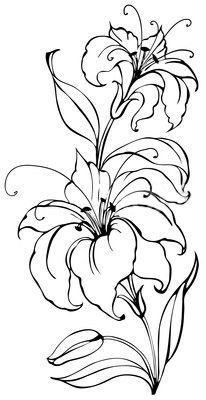 Pin By Valeria Martins On Malen In 2020 Flower Sketches Lilies Drawing Flower Drawing