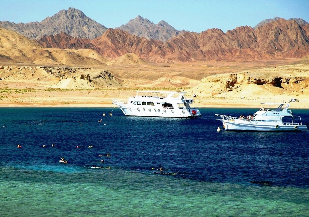 SHARM EL SHEIKH - MOUNT SINAI WITH A NIGHT IN CAIRO@ $899.00 8 DAYS / 7 NIGHT All services mentioned in the route as included; * Total 7 nights, as described script; with half board; * Transfers and tours as per itinerary planned in the roadmap; * Assistance at airports in Cairo and Sharm El Sheikh; * Tourist orientation with Egyptologist guide who speaks Portuguese or Spanish, subject to availability; * Kite Sunflower Egypt Travel Travel.