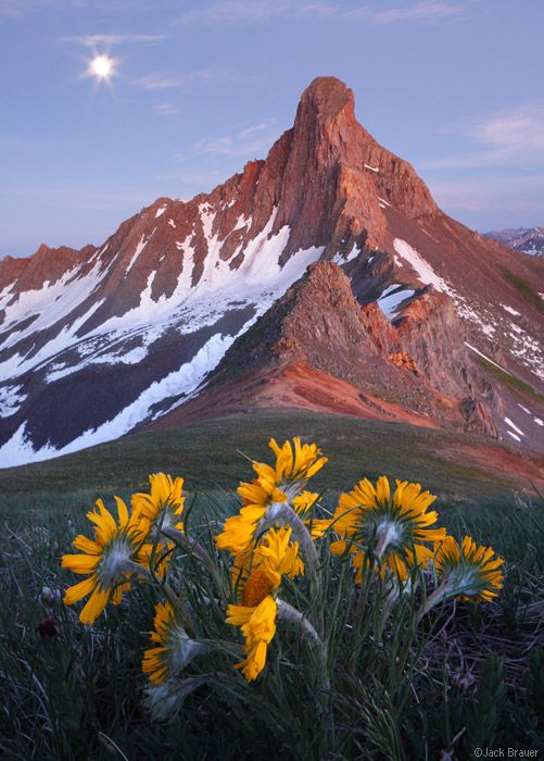 Wetterhorn Moonflowers    San Juan Mountains, Colorado  by Jack Brauer