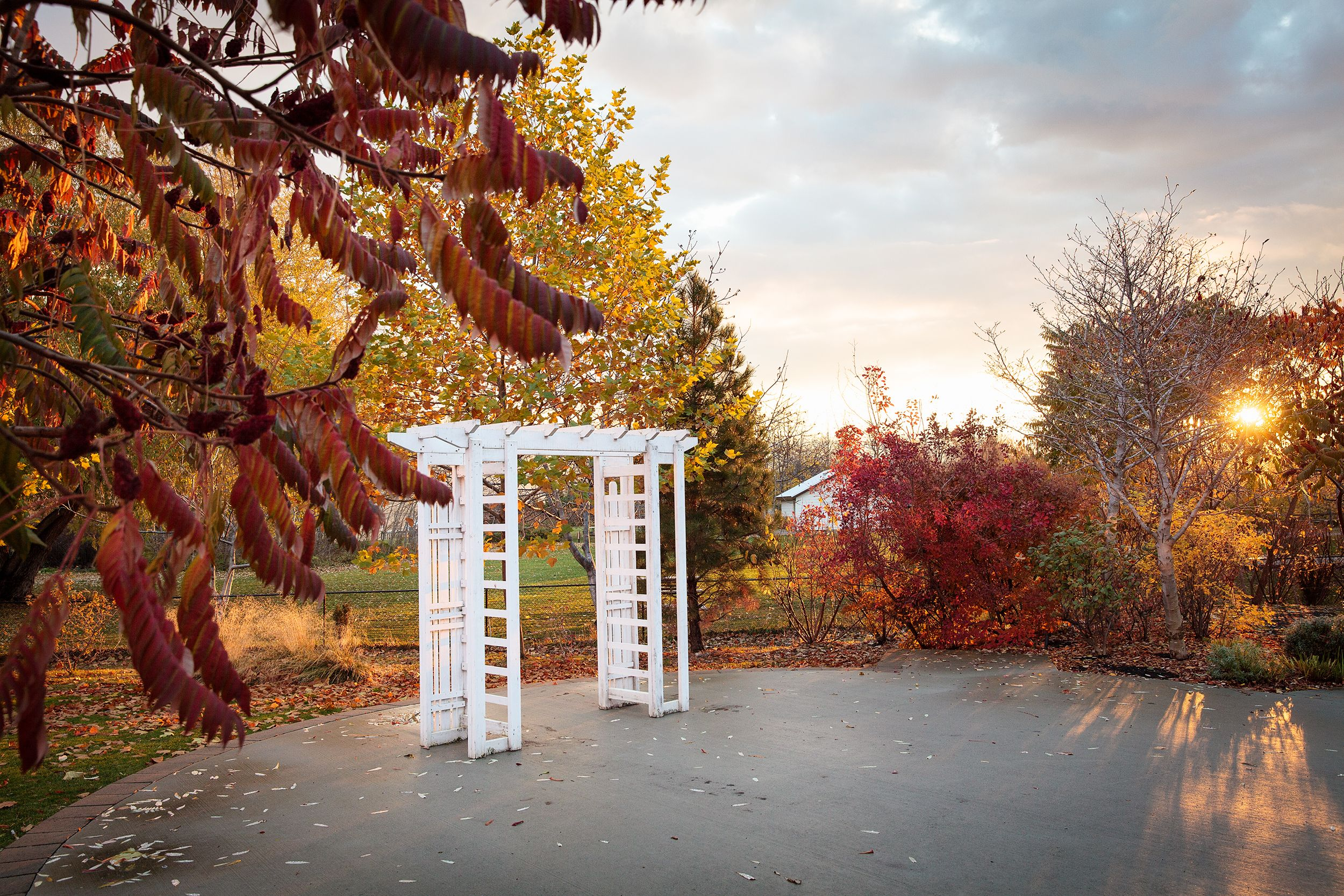 Fall in the Wedding Gardens is my favorite with all of the colors ...