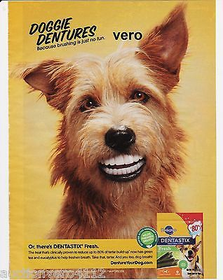 2013 Magazine Ad Pedigree Doggie Dentures Dog Teeth Advertisement