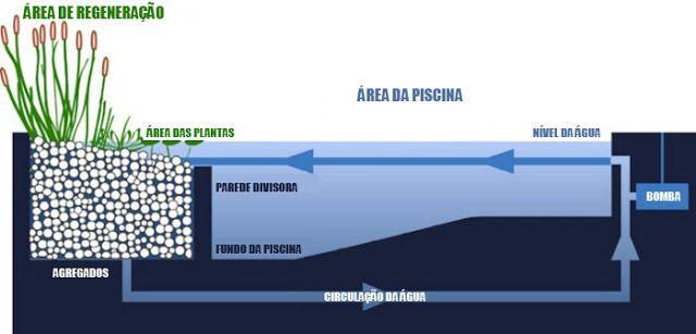 Processo da piscina biol gica piscinas ecol gicas for Piscinas biologicas