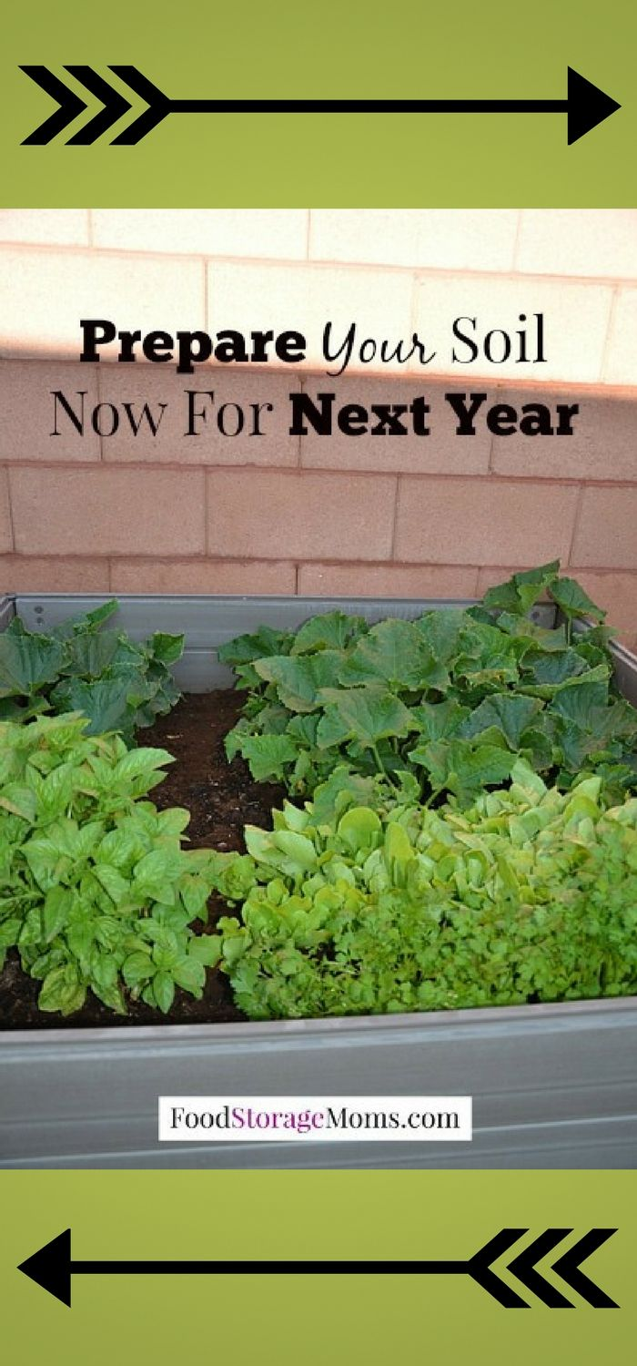 How To Prepare Soil For Next Year Gardening