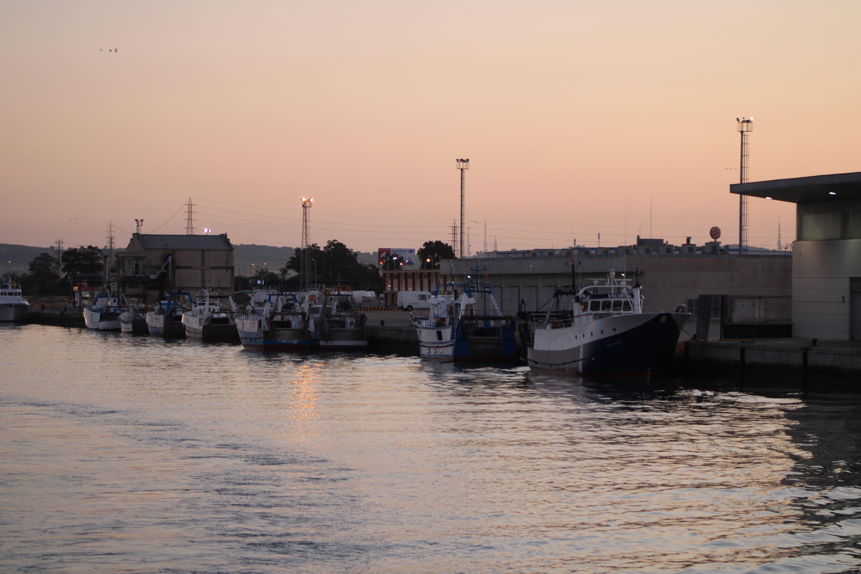 embarcaciones pesqueras en el rio Guadalete al amanecer